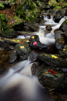 Cat Gill Waterfall.jpg