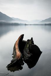 Ullswater Stump