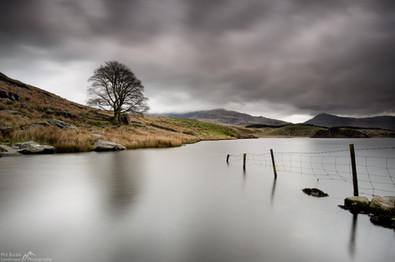 Llyn Dywarchen Fence.jpg