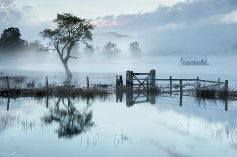 Gale Bay Mist.jpg