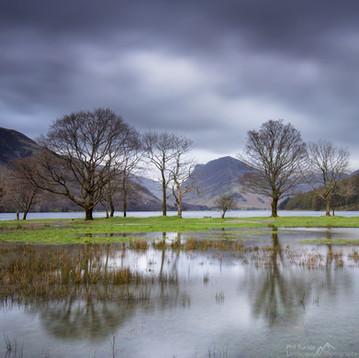 Buttermere Puddle