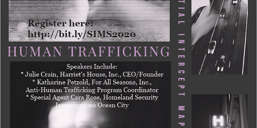 6th Annual Sequential Intercept Mapping Meeting - Human Trafficking