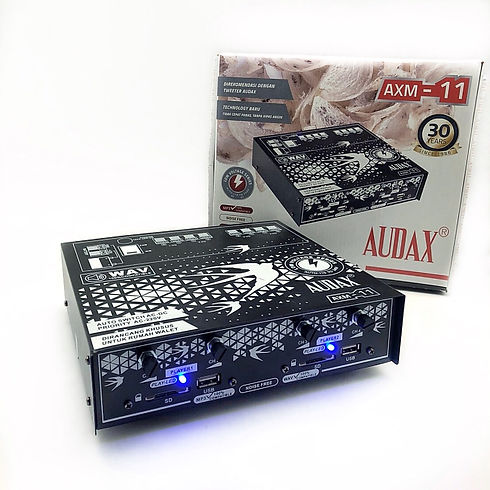 AUDAX_AXM-11_amplifier_walet.jpg