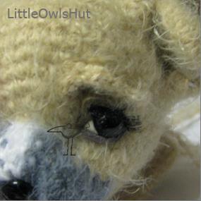 Finished eyes on a Shih Tsu puppy