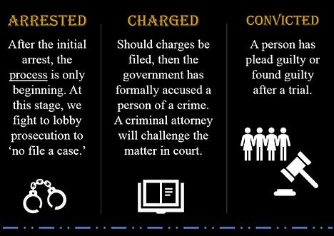 DelRicco Law Group - Legal Terms Arreste