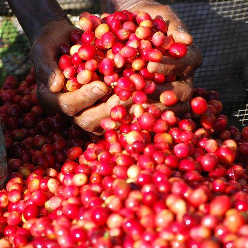 Buhorwa Burundi