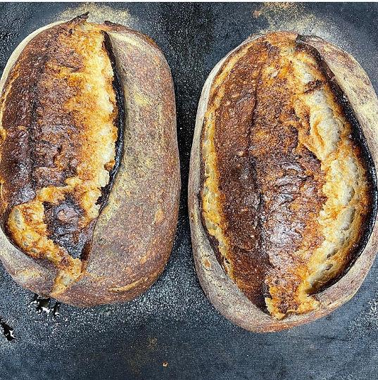 Sourdough loaves.jpg