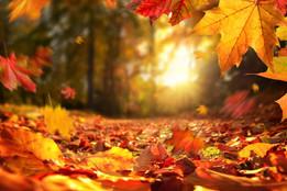 Fall 21 Closing Dates