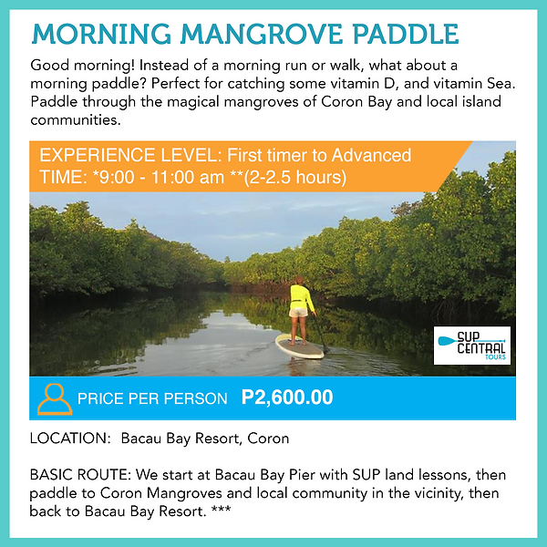 01 Morning Mangrove Paddle 2020 SQUARE.p