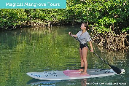 stand-up paddle, coron, palawan, SUP, mangrove, paddle, tours, supcoron, supcentral, supcentraltours, beach