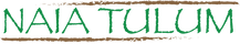 Logo temporal 1000x1000.png