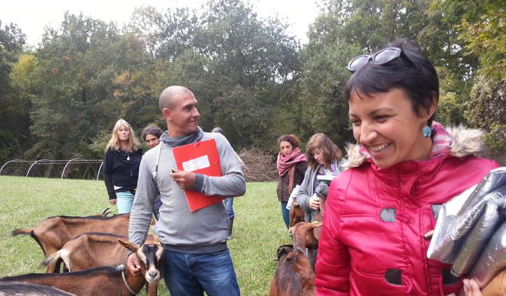 Animal Communication / Communication Intuitive
