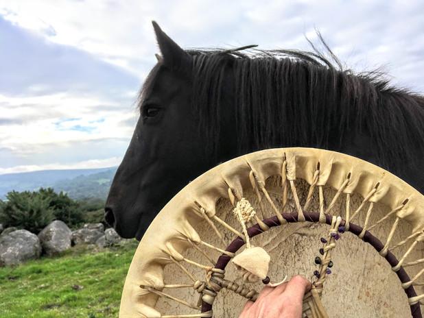 Shamanic Horsemanship