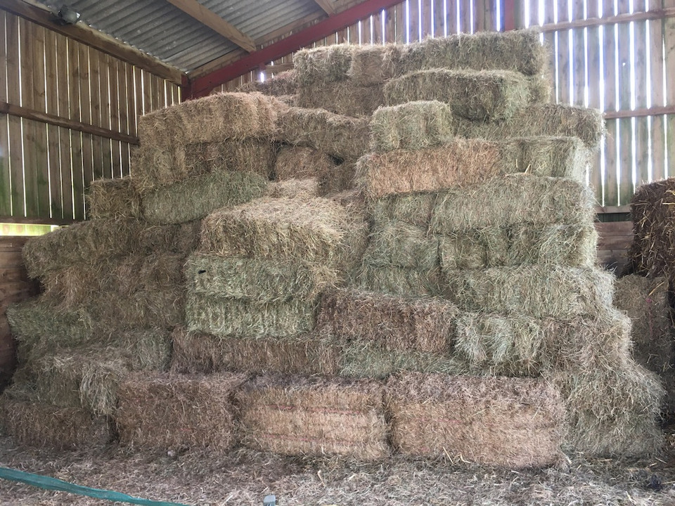 Hay stack