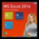 Excel 2016 Intermediate.png