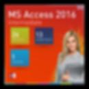 Access 2016 Intermediate.png
