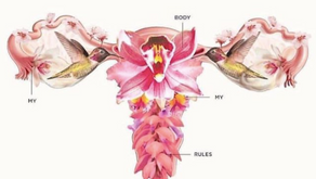 The Truth About the Cervical Orgasm...