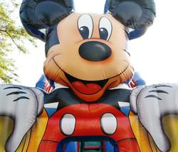 Tobogã Gigante Mickey