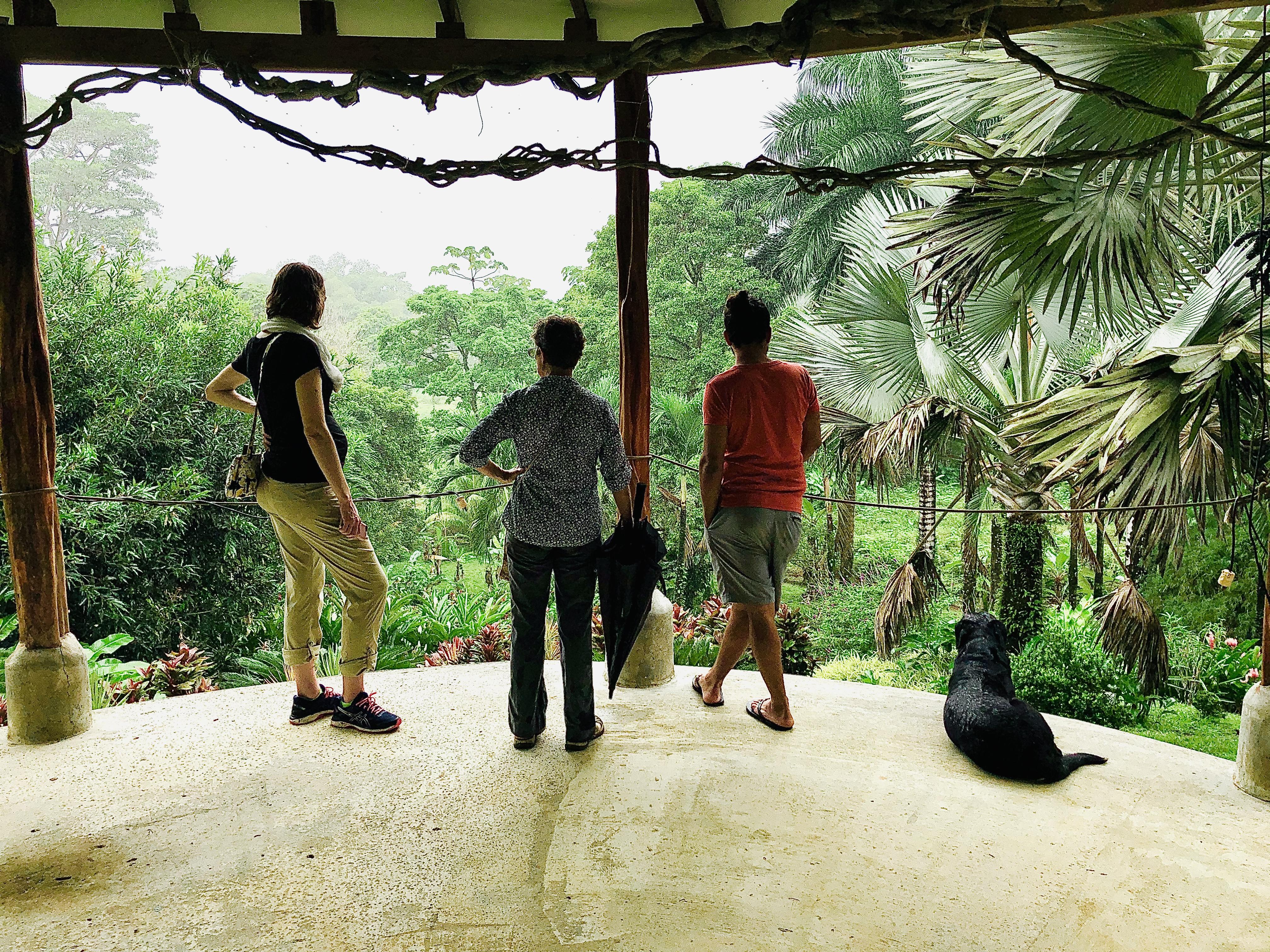 Botanical Garden Visit