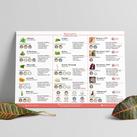 bionorm katalog