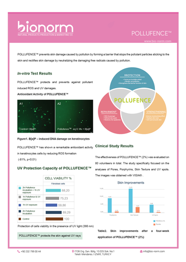 bionorm | Katalog Tasarımı