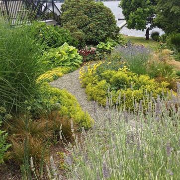 Mediterranean style garden