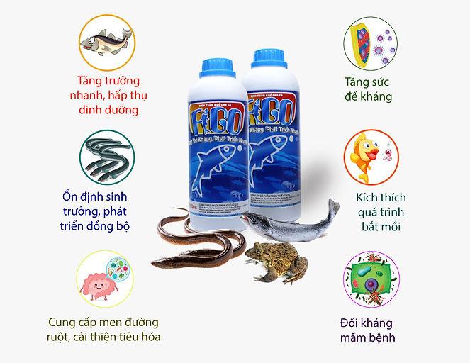 thuc-phan-bo-sung-tang-de-khang-lon-nhan