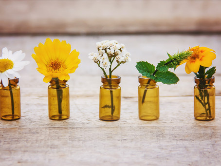 The Benefits of Botanical Oils in Natural Skincare