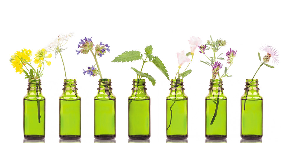Essential Oils Webinar for Beginners