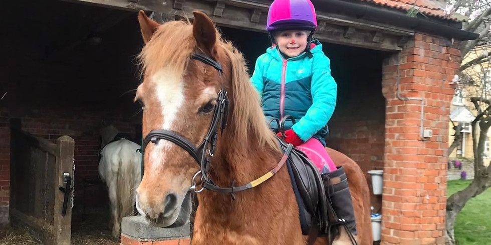Own a pony day 9th April