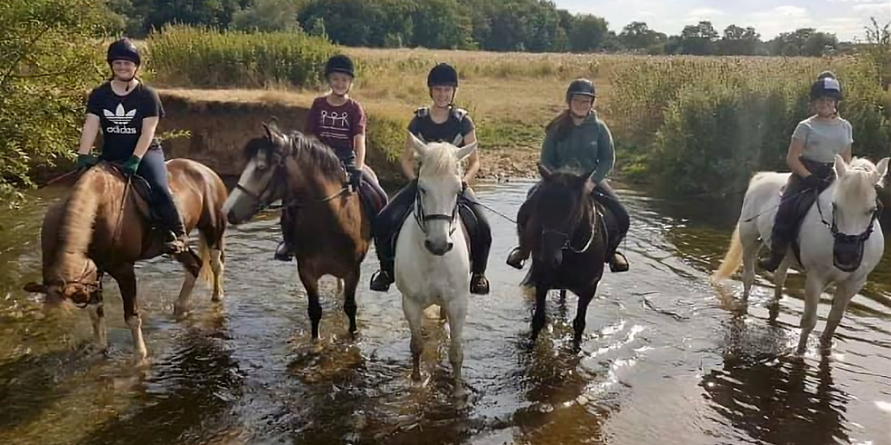 Own a pony day 16th April