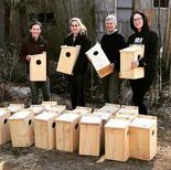 squirrel boxes.jpg