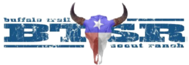BTSR Logo png