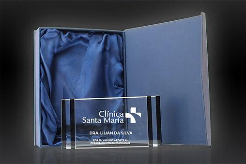 El Retrato Cromo tienen cristales combinados. Elija estos premios contemporáneos para reconocer a sus mejores funcionarios. La inscripción y el logotipo están profundamente grabados en el cristal para una apariencia y sensación de calidad premium.