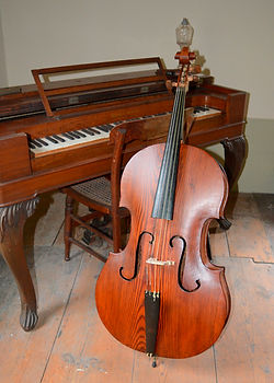 cello July 26-17 (57).JPG