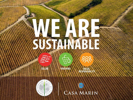 WE ARE SUSTAINABLE !