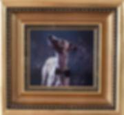 glimma studio hundfotografi.jpg
