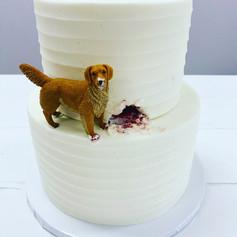 Dog Grooms Cake