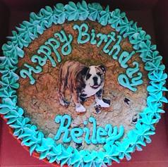 English Bulldog Cookie Cake