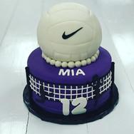 Volleyball Theme Birthday Cake
