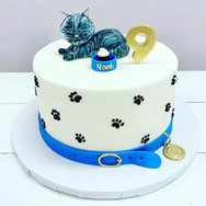 Cat Theme Birthday Cake