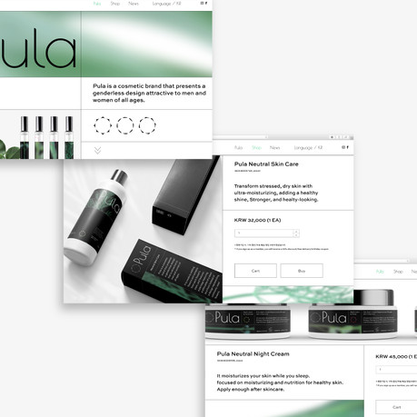 Pula - UX/UI