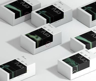 Boxes-Packaging-Presentation-Mockup.jpg