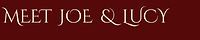 scar gatherer series time travel children adventure fiction history ring ruins shimmer glass slaves isabella demon embers falconer's quarry saving unicorn's horn leopard golden cage Julia Edwardsherer series time travel children adventure fiction history shimmer glass slaves isabella demon embers falconer's quarry saving unicorn's horn leopard golden cage Julia Edwards