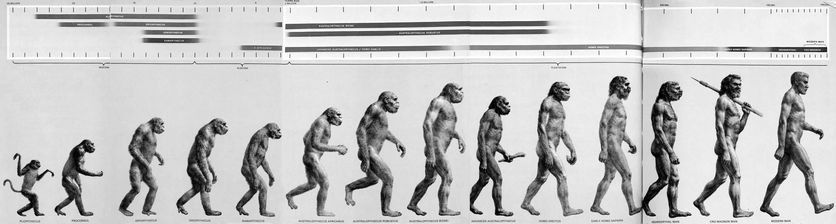 famous, victorians, charles, darwin, life, story, natural, selection, evolution, origin, species, march, progress, early, man