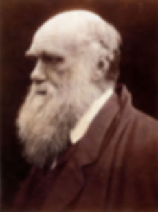 famous, victorians, charles, darwin, life, story, natural, selection, evolution, origin, species
