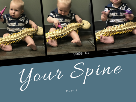 Part 1: Your Spine