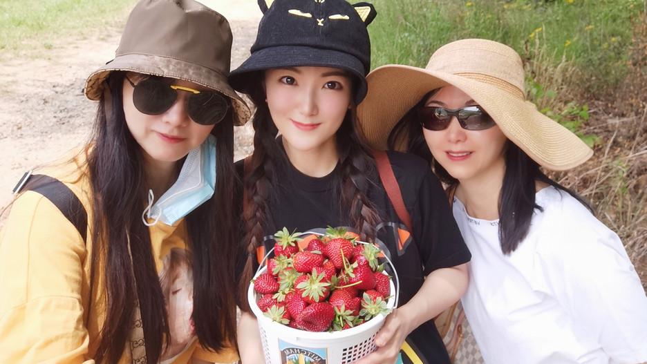 Georgia Mitcham Farm Strawberry Picking & Festival