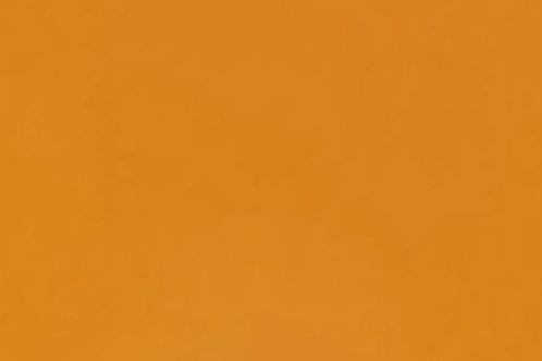 Pumpkin Orange 300 x 250mm (Striker)