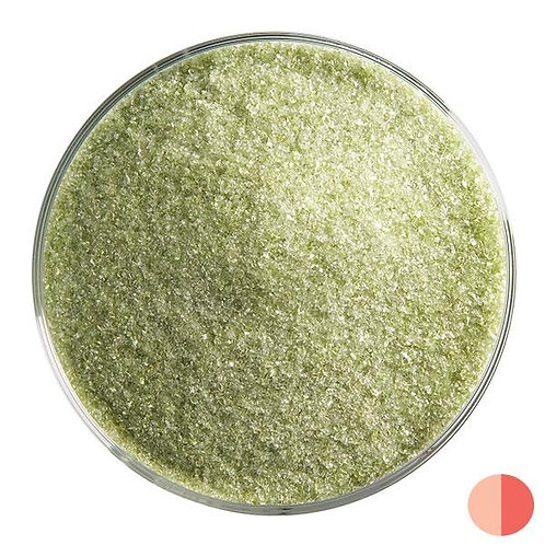 Pine Green Transparent-1241